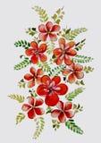 Красивый букет акварели цветков Стоковая Фотография