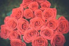 Красивый букет красных роз в естественном свете, влюбленности и романтичной предпосылке Стоковая Фотография