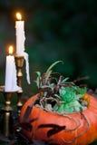 Красивый букет падения в вазе от тыквы Стоковое Фото