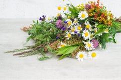 Красивый букет цветков поля лета стоковая фотография