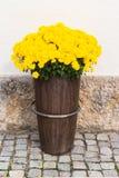 Красивый букет ярких wildflowers Стоковые Изображения RF
