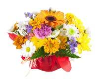 Красивый букет gerbera, гвоздик и других цветков стоковое изображение