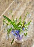 Красивый букет snowdrops в вазе стоковое фото