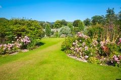 Красивый благоустраиванный сад лета Стоковая Фотография RF
