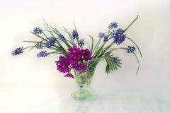 красивый, ваза цветков весны изолированная на светлой предпосылке Стоковые Фотографии RF