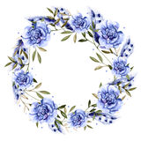 Красивый венок акварели с ветреницей и пер цветков Стоковые Фото