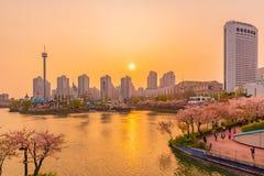 Красивый взгляд захода солнца озера Seokchon стоковое изображение rf