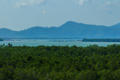 Красивый взгляд ландшафта вечнозеленого леса мангровы на накидке Yamu, Paklok, Thalang Пхукете, Таиланде Рост туризма и co Стоковые Фотографии RF