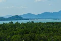 Красивый взгляд ландшафта вечнозеленого леса мангровы на накидке Yamu, Paklok, Thalang Пхукете, Таиланде Рост туризма и co Стоковое фото RF