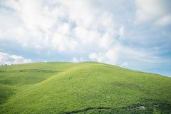 Красивый взгляд ландшафта зеленой травы с backgr голубого неба Стоковые Фотографии RF