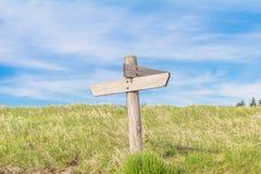 Красивый взгляд ландшафта зеленой травы с backgro голубого неба Стоковые Фото