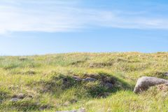 Красивый взгляд ландшафта парка Utsukushigahara с голубым sk Стоковые Изображения