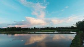Красивый взгляд поля риса имеет славное облако в северном Таиланде Стоковые Изображения RF
