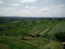 Красивый взгляд Бали Индонезия ландшафта стоковые изображения rf