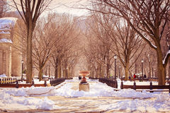 Красивый взгляд зимы от красивого места Стоковая Фотография RF