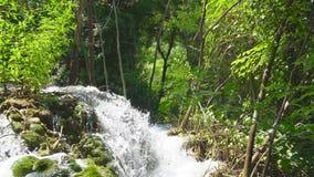 Красивый вид водопада сток-видео