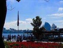Красивый вид гавани и оперы Сиднея стоковое фото rf