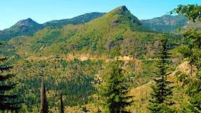 Красивый вид горной тропы клубники на Сент-Хеленс стоковая фотография