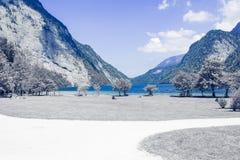 Красивый вид гор с озером и лугом стоковые фото