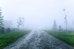 Красивый вид дороги на тумане Стоковые Изображения