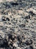 Красивый вид и текстура стоковое изображение