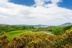Красивый вид национального парка Connemara, известный для трясин и вересков, наблюданный сверх своей конусовидной горой, холм диа стоковая фотография rf