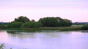 Красивый вид на озере на заходе солнца Шикарные красочные предпосылки природы акции видеоматериалы