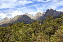 Красивый вид от бдительности долины Hollyford, Новой Зеландии стоковая фотография rf