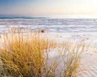 Красивый вид прибрежных дюн Стоковая Фотография