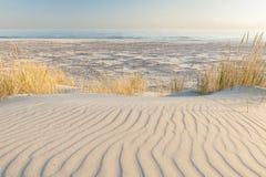 Красивый вид прибрежных дюн Стоковые Фотографии RF