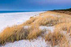 Красивый вид прибрежных дюн Стоковые Изображения