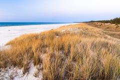 Красивый вид прибрежных дюн Стоковые Изображения RF