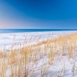 Красивый вид прибрежных дюн Стоковое Фото