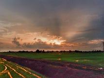 красивый вид рисовых полей дальше однажды вечером Стоковое фото RF