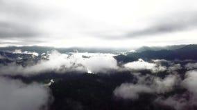 Красивый вид с воздуха королевского Belum Малайзии сток-видео