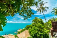Красивый вид с воздуха пляжа и моря с пальмой кокоса внутри Стоковая Фотография