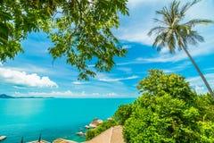 Красивый вид с воздуха пляжа и моря с пальмой кокоса внутри Стоковые Изображения RF