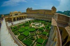 Красивый вид с воздуха сада янтарного форта в Джайпуре, Индии, влиянии глаза рыб Стоковая Фотография