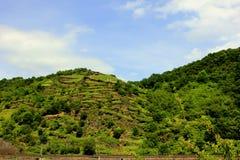 Красивый вид холмов Рейна стоковые фото