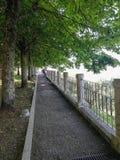 Красивый вид Montalcino Стоковое Изображение