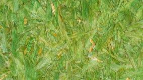 Красивый винтажной текстуры и предпосылки зеленого цвета деревянной Стоковые Изображения