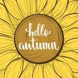 Красивый винтажный цветок солнцецвета Здравствуйте! осень Стоковые Фото