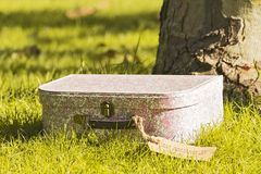 Красивый винтажный чемодан в парке осени Стоковое Фото