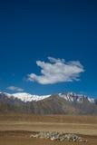 Красивый вид гор на шоссе Leh - Manali близко к деревне угрызения - район Тибета, Leh, Ladakh, Jammu и Kashm Стоковое Изображение RF