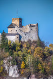 Красивый вид замка Niedzica, Польши, Европы Стоковые Изображения