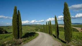 Красивый вид зеленых полей и лугов на заходе солнца в Тоскане Стоковое Изображение