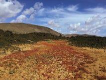 Красивый вид обозревая ржавую красную пустыню, дистантные горы в острове Фуэртевентуры, Canaries, Испании Стоковые Изображения