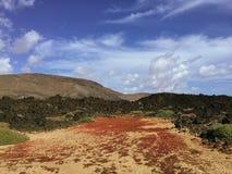 Красивый вид обозревая ржавую красную пустыню, дистантные горы в острове Фуэртевентуры, Canaries, Испании Стоковое Изображение RF