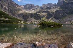 Красивый вид озера горы в высоком Tatras Польша Стоковое Изображение
