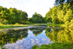 Красивый вид озера над красивейшими облаками птиц цветы раньше летают море подъемов отражения природы утра золота приятное тихое  Стоковая Фотография